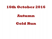 Autumn Gold Run 16-10-16