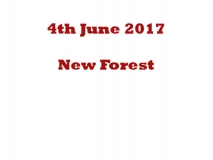 The New Forest Run 04-06-17